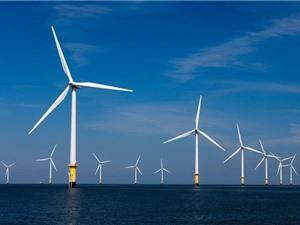 Bình Thuận tập trung nhiều dự án điện gió ngoài khơi công suất lớn