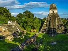 Hệ thống lọc nước đầu tiên trên thế giới của người Maya