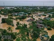 Các nhà khí hậu học thế giới nghiên cứu về bão lũ nghiêm trọng ở VN