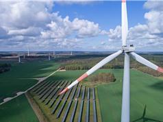 Năng lượng tái tạo: Các mục tiêu hướng tới có thể làm suy yếu tính bền vững