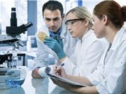 Vị Tổng thống đắc cử cần làm gì để phục hồi khoa học Mỹ?