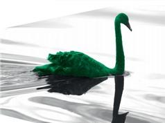 """Biến đổi khí hậu: """"Thiên nga xanh"""" của cuộc khủng hoảng tài chính tiếp theo"""