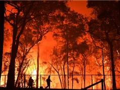 Carbon dioxide làm gia tăng các hiện tượng thời tiết khắc nghiệt ở Úc