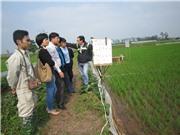 Công nghệ thủy lợi nội đồng: Góp phần giải quyết việc tưới tiêu trong nông nghiệp 'xanh'