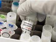 Vaccine Oxford Covid: Tác dụng với mọi lứa tuổi