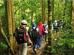 30 đơn vị du lịch cam kết bảo vệ môi trường và động vật hoang dã