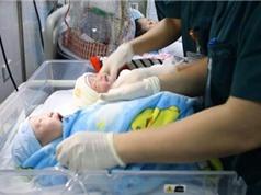 Tổng điều tra dân số: Mất cân bằng giới tính khi sinh vẫn ở mức rất cao
