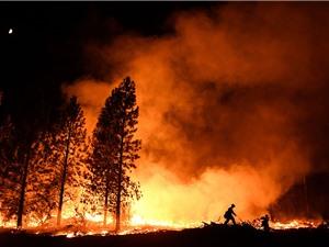 Cháy rừng do con người khủng khiếp hơn do sét đánh