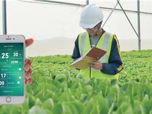 Nông nghiệp công nghệ cao: Trọng tâm của startup Việt Nam?