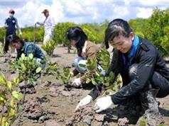 Việt Nam thúc đẩy phục hồi xanh sau Covid-19?
