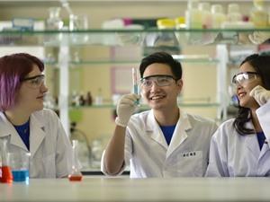 Đại học Việt-Pháp mở ngành Khoa học dữ liệu và Kỹ thuật ô tô
