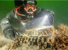 Cỗ máy mật mã Enigma dưới đáy biển Baltic