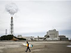 Nhật Bản công bố kế hoạch tăng trưởng xanh cho mục tiêu trung hòa carbon năm 2050