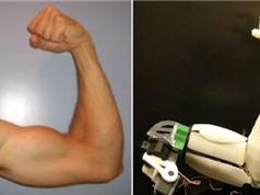 Quân đội Mỹ phát triển robot có cơ bắp giống người
