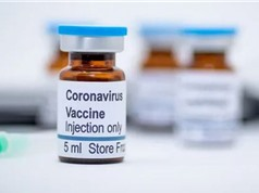 Brazil sản xuất vaccine CoronaVac