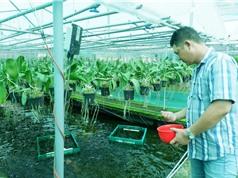 Đưa liên kết bốn nhà: nhà nước, nhà khoa học, nhà doanh nghiệp và nhà nông, ngày càng thực chất và bền chặt