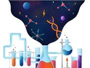 Khoa học cơ bản: Giữa vẻ đẹp và tính hữu ích