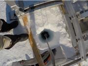 Tìm thấy sự sống dưới các thềm băng nổi của Nam Cực