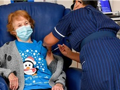 Anh chủ động lây nhiễm Covid-19 lên tình nguyện viên để nghiên cứu vaccine