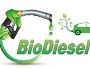 Sản xuất biodiesel với giá thành thấp: Một bước ngoặt mới