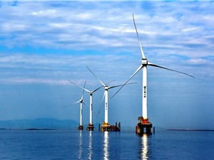 Điện gió ngoài khơi vẫn tăng trưởng mạnh, bất chấp dịch bệnh