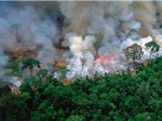 LHQ: Thế giới còn cách xa mục tiêu khí hậu của Thỏa thuận Paris