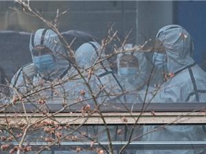 WHO kết thúc điều tra nguồn gốc đại dịch ở Trung Quốc: Vẫn còn nhiều điều bí ẩn