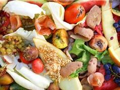 LHQ: Thế giới lãng phí gần 1 tỷ tấn thực phẩm mỗi năm