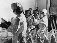 Vụ cướp vaccine chấn động Canada năm 1959
