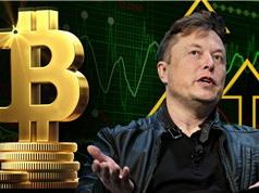 Doanh nghiệp có nên đầu tư bitcoin?