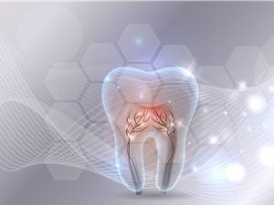 Thuốc mới giúp tái tạo răng đã mất