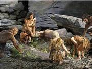[Video] Người cổ đại Neanderthal cũng có công cụ vệ sinh răng miệng