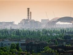Phát hiện mới về ảnh hưởng di truyền của bức xạ từ thảm họa Chernobyl