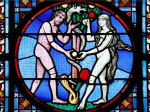 Trái cấm trong Kinh Thánh có thật là trái táo?