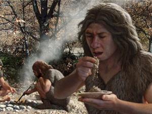 Người Neanderthal phát triển bộ não nhờ ăn nhiều tinh bột