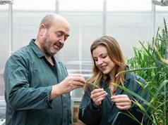 Châu Âu bật đèn xanh cho chỉnh sửa gene trong nông nghiệp