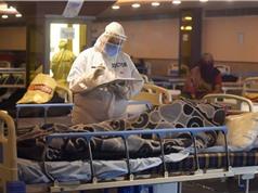 Covid làm gia tăng bệnh nấm nguy hiểm ở Ấn Độ