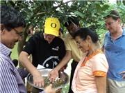 Giải thưởng Lương thực Thế giới 2021: Ghi nhận vai trò cải thiện dinh dưỡng của cá nhỏ