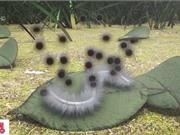 Bệnh nấm đen xuất hiện ở Ấn Độ trong cơn bão Covid-19