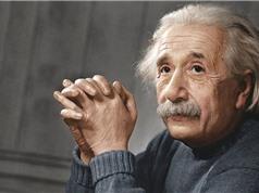 Albert Einstein dự đoán về siêu giác quan của động vật