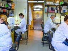 Các nhà khoa học Argentina nghiên cứu vaccine COVID-19 thế hệ 2