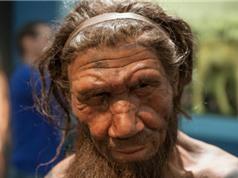 DNA từ bụi trong hang động gợi mở về cuộc sống của người Neanderthal