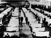 Virus đột biến trong đại dịch cúm năm 1918