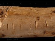Người cổ đại học đếm như thế nào?