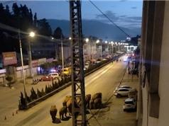 Đàn voi rừng vượt hơn 500 km, đến ngoại ô thành phố Côn Minh
