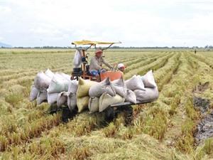Từ trang trại đến bàn ăn: phần lớn đầu tư cho thực phẩm đều rơi vào công đoạn chế biến