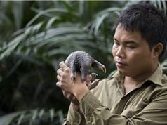 """Nhà bảo tồn Nguyễn Văn Thái, giải """"Nobel Xanh"""": Bảo vệ tê tê là sứ mệnh cả đời"""