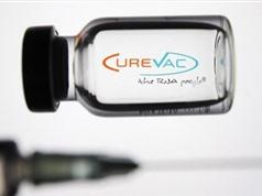 Đức: Vaccine của hãng CureVac có hiệu quả 48% ở mọi lứa tuổi