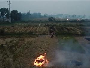 Đốt rơm rạ góp bao nhiêu phần vào ô nhiễm không khí ở Hà Nội?