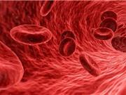 Khám phá liệu pháp mới giúp cải thiện phản ứng miễn dịch